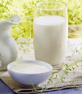 susu bebas lemak
