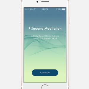 second meditation