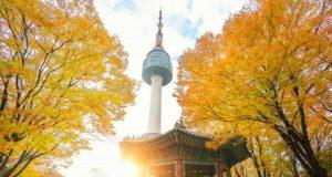 destinasi liburan gratis di Korea Selatan