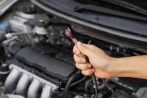 mencegah tikus bersarang di mesin mobil